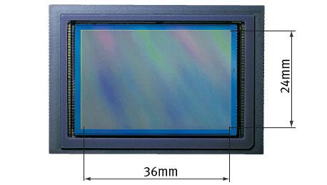 Canon and Nikon Lurking — Do Digital Full-Frame Cameras Soon Go Mainstream?