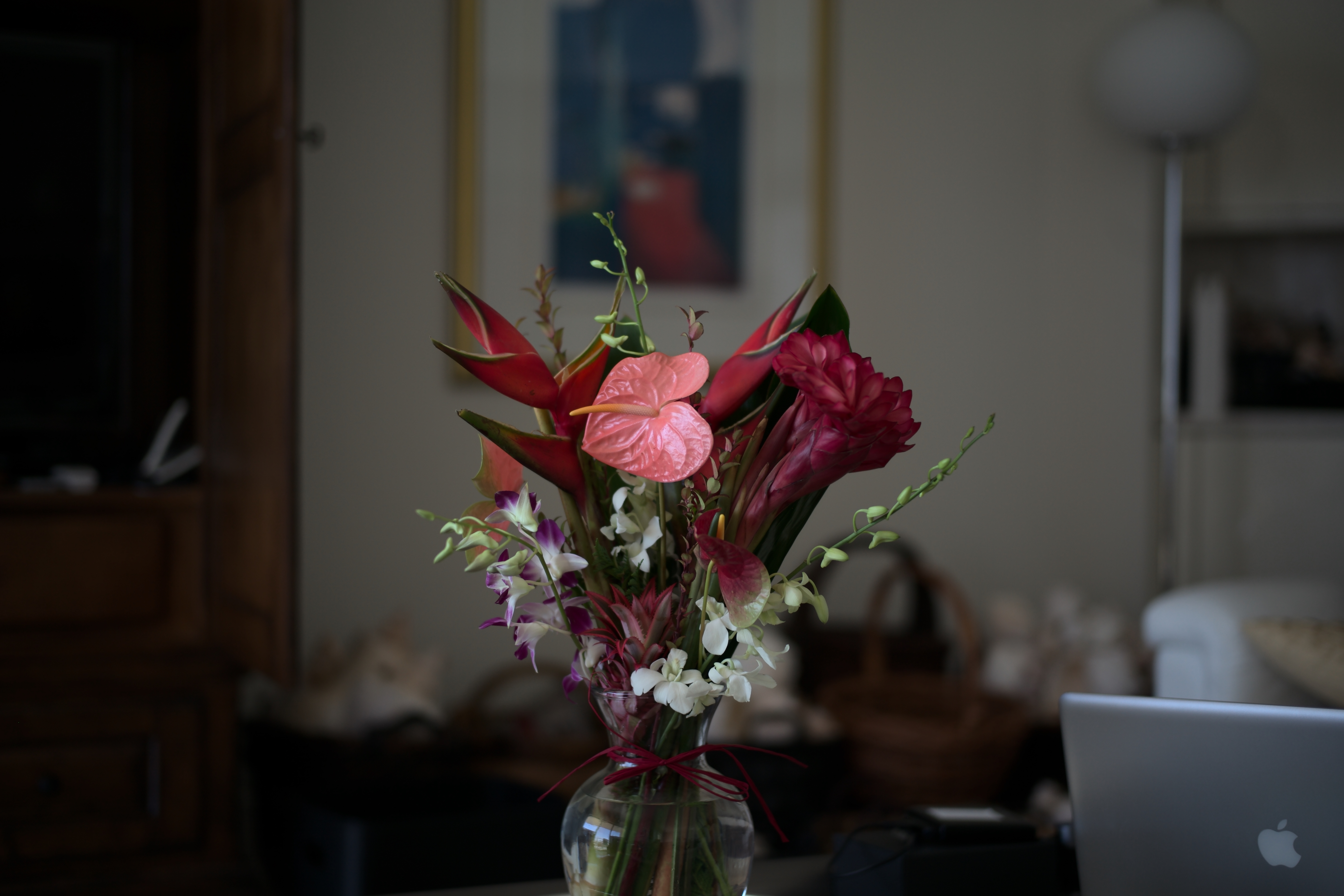 First Full Resolution Leica M Typ 240 JPEG and RAW Sample Images ...