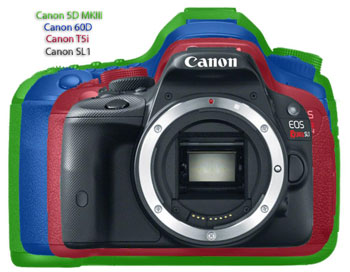 How much smaller is way too small?   canonwatch.com